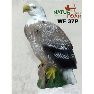 3D Target 3D TARGET EAGLE WITH WHITE HEAD