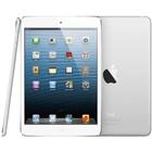 iPad Mini 1,2 en 3 (2014 en ouder)