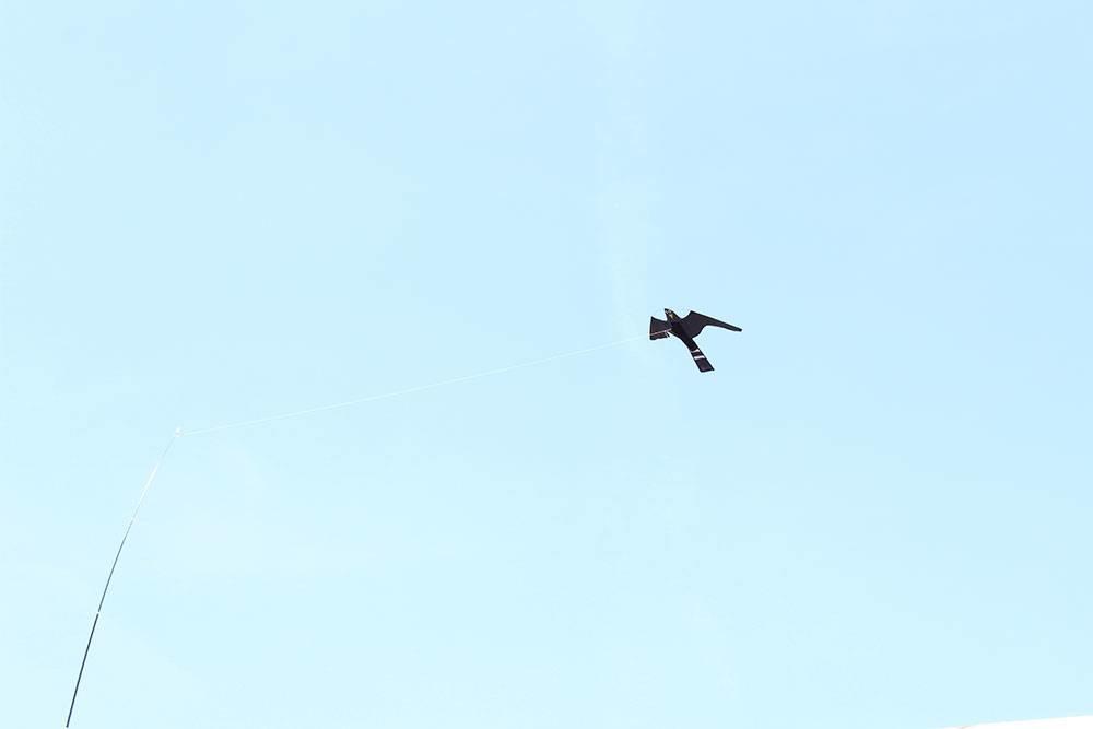Vogelverjagers online