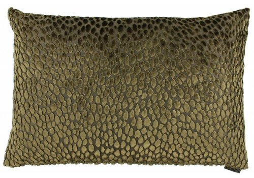 CLAUDI Cushion Speranza Gold