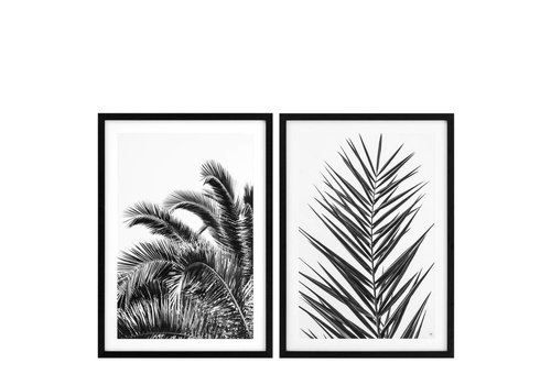 EICHHOLTZ Prints 'Palm Leaves' set von 2