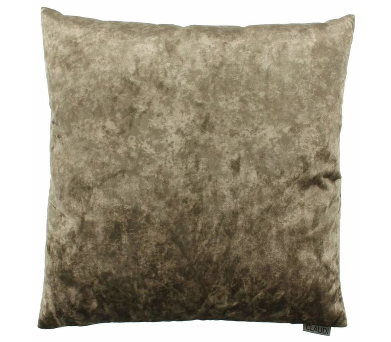 Cushion Marble  color Taupe