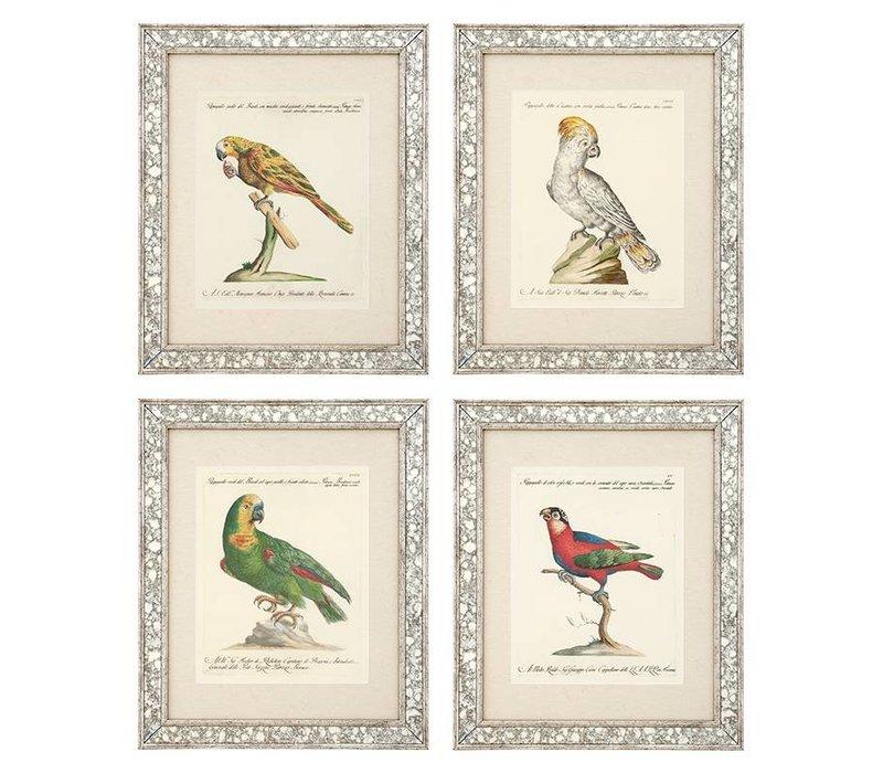 Prints Dunbar II set of 4