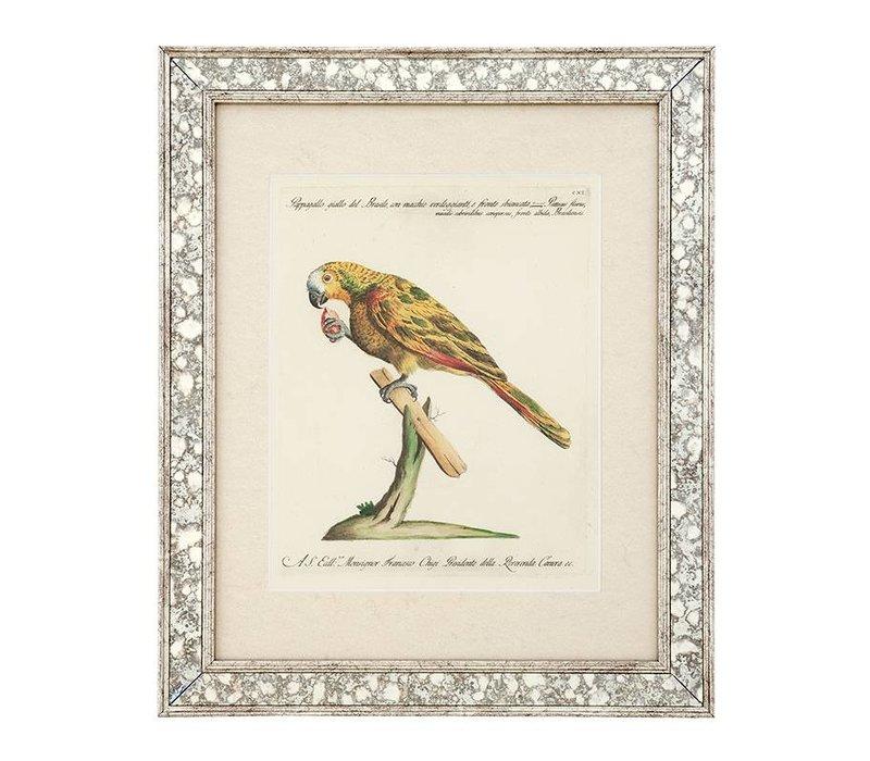 Prints Dunbar II set van 4
