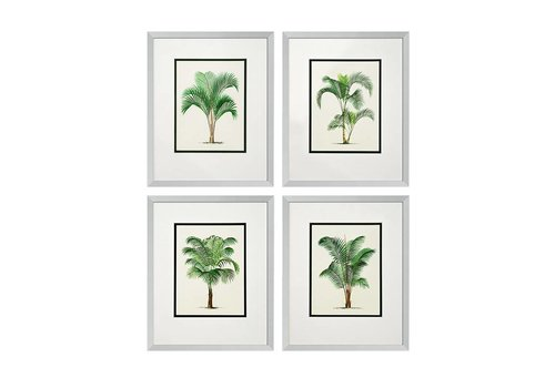 EICHHOLTZ Prints Palms