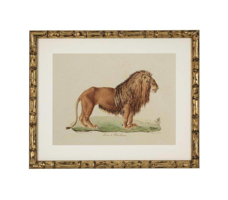 Prints Lion, Tiger, Jaguar set of 6