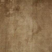 Carpet Lake Gold