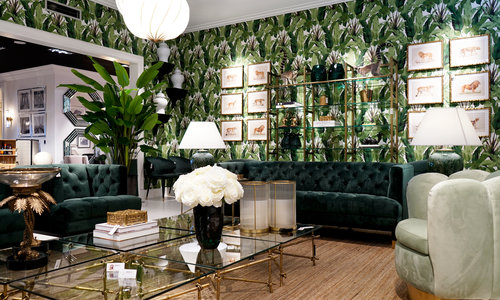Shop The Room | Tropical Delight >