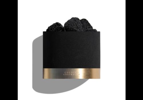 Cocolux Australia Diffusor Luna 'Violet Tabac'