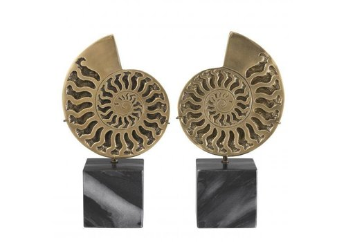 EICHHOLTZ Decoration object Ammonite set of 2