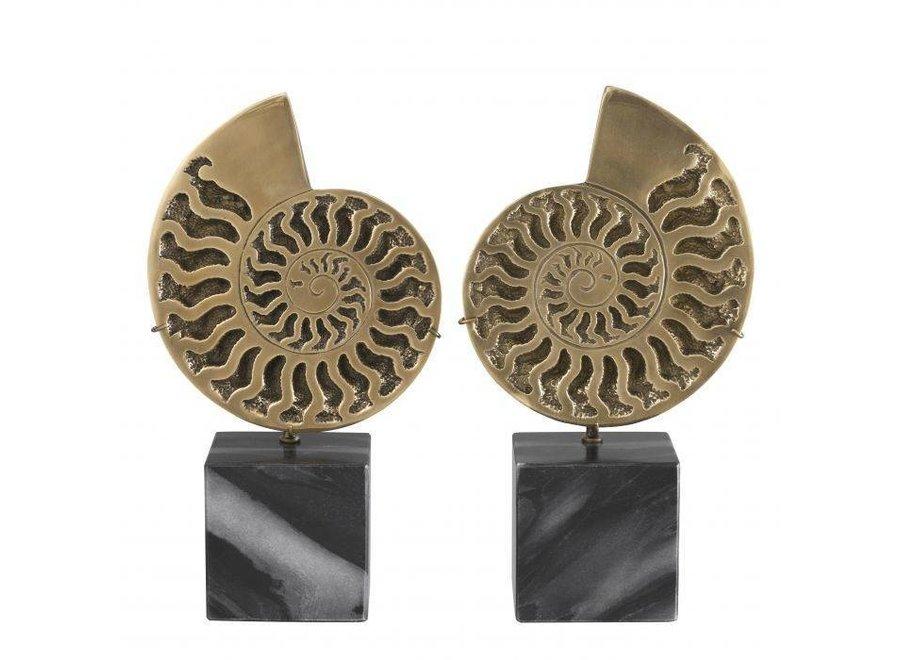 Decoratie object Ammonite set van 2