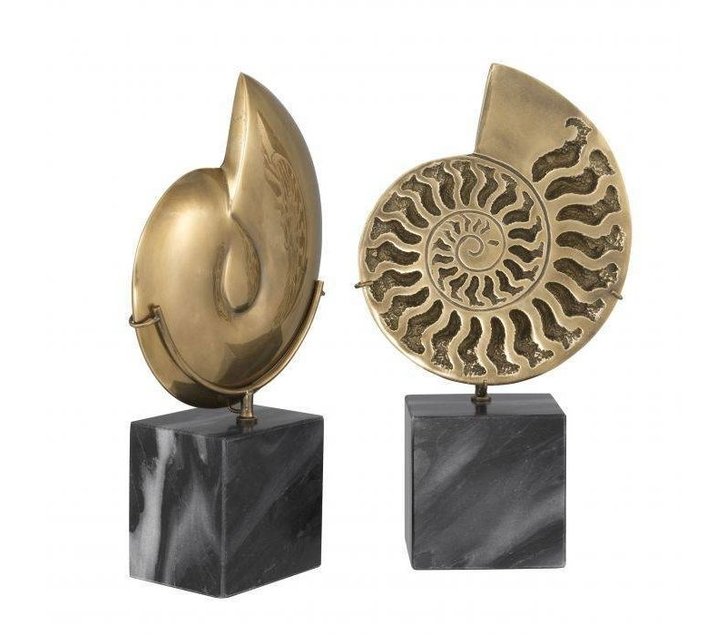 Decoratie object 'Ammonite' set van 2