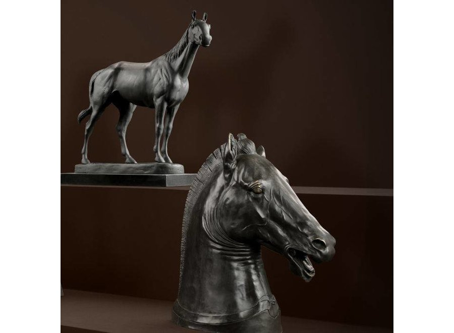 Horse 'Rodondo'