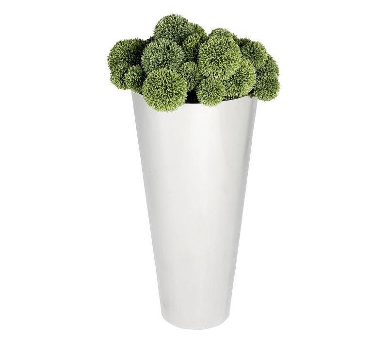Pflanzer 'Oberoi'