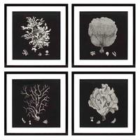 Coral prints framed - set of 4