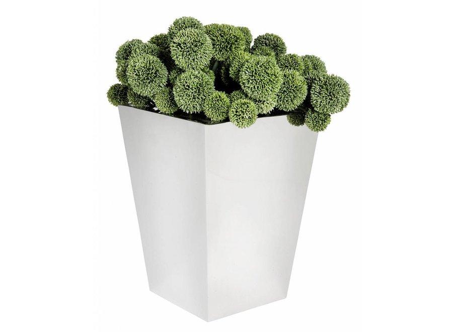 Plantenbak roestvrijstaal 'Hanbera'