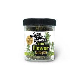 Astri Garden CBD Blume - Carmagnola 20%