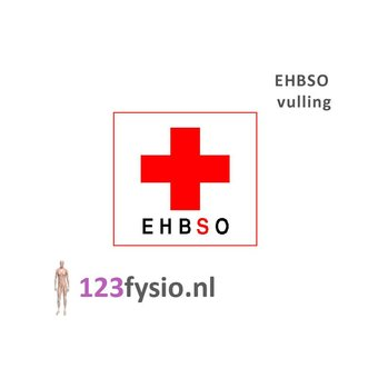 123fysio.nl EHBSO vulling