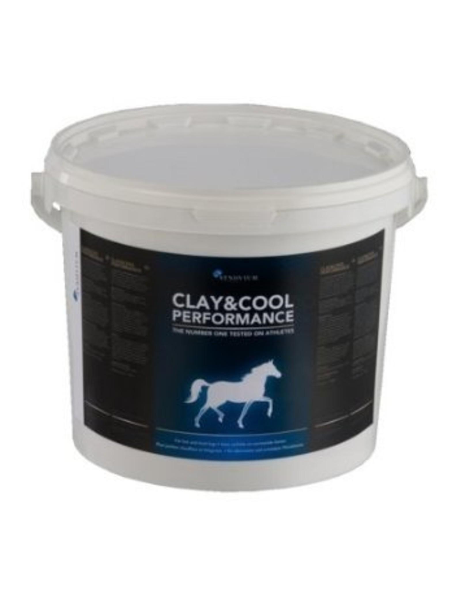Synovium Synovium® Clay & Cool 20 kilo