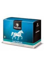 Synovium Synovium® Lactaplus 6 x 40 gr