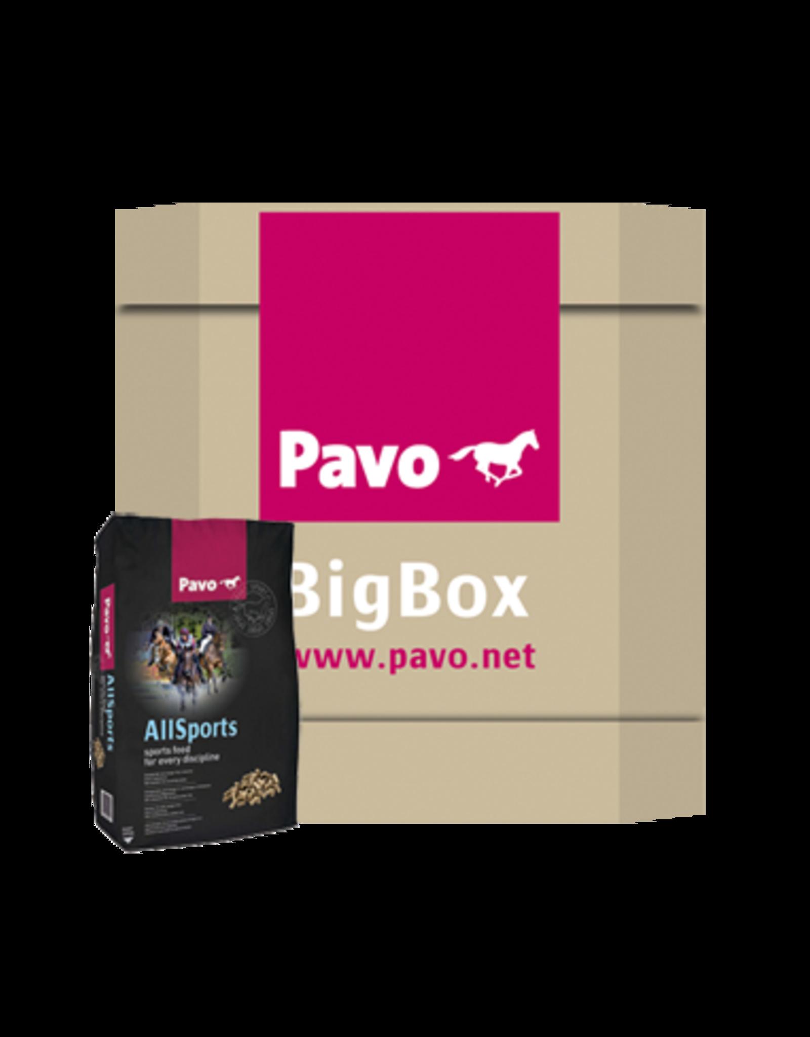 Pavo Pavo AllSports Big Box 725 kg