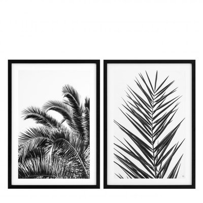 Eichholtz Prints Palm Leaves Set Van 2