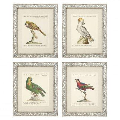 Eichholtz Prints Dunbar II set van 4