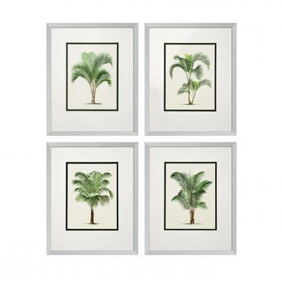 Eichholtz Prints Palms set van 4