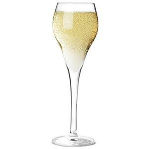 ARCOROC  Champagne flute 16 cl Brio