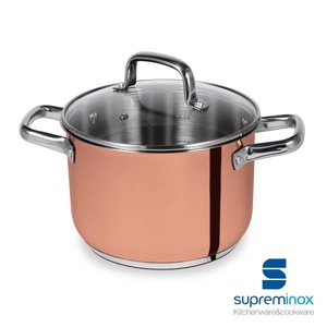 SUPREMINOX  Stock pot  24 cm with glass lid