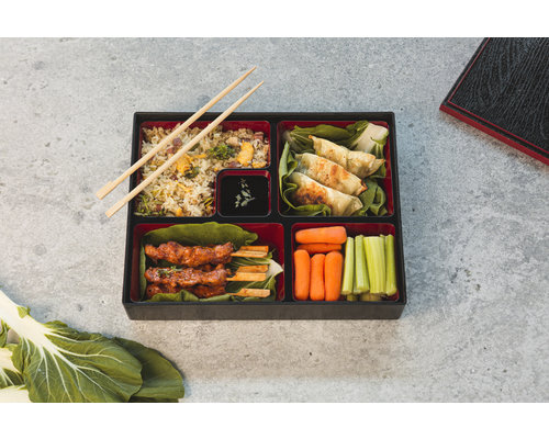 M & T  BENTO BOX with lid  ABS 30 x 24 x h 6 cm