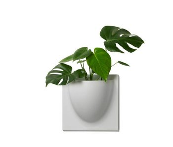Vertiplants Wall Jar Grey