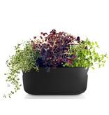 Eva Solo Self Watering Herb Organiser Black
