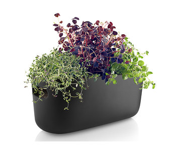 Eva Solo Self Watering Herb Organiser Black