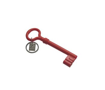 Areaware Silicone Key Chain Pop Rood