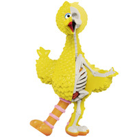 Big Bird (Sesame Street) XXRAY Plus by Jason Freeny