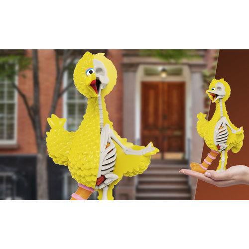 Mighty Jaxx Big Bird (Sesame Street) XXRAY Plus by Jason Freeny