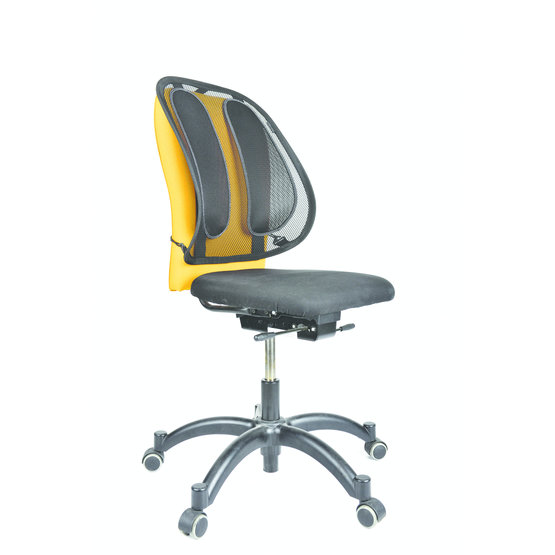 Fellowes Office Suites™ Mesh rugsteun
