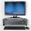 DESQ 1532 Monitorstandaard Triangle