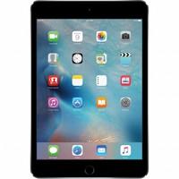 iPad Mini 4