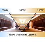 AppLamp ProLine PRO LINE Dual Wit 2300K~5000K CCT Led Strip | 5m 240 Leds pm Type 2216 24V - Losse Strip