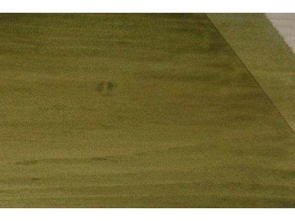 Wood Protect beits transparant olijfgroen
