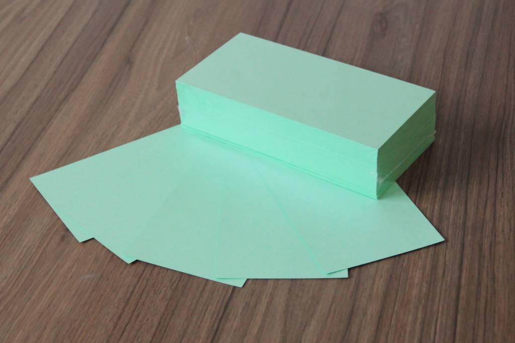 """Datamondial """"die Dicken"""" Moderationskarten Rechteck 10x20cm, 250 Stück, Farbe pastellgrün"""
