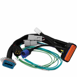 MSD Ignition Harness Adaptor, 7730 to Digital-7 Prog
