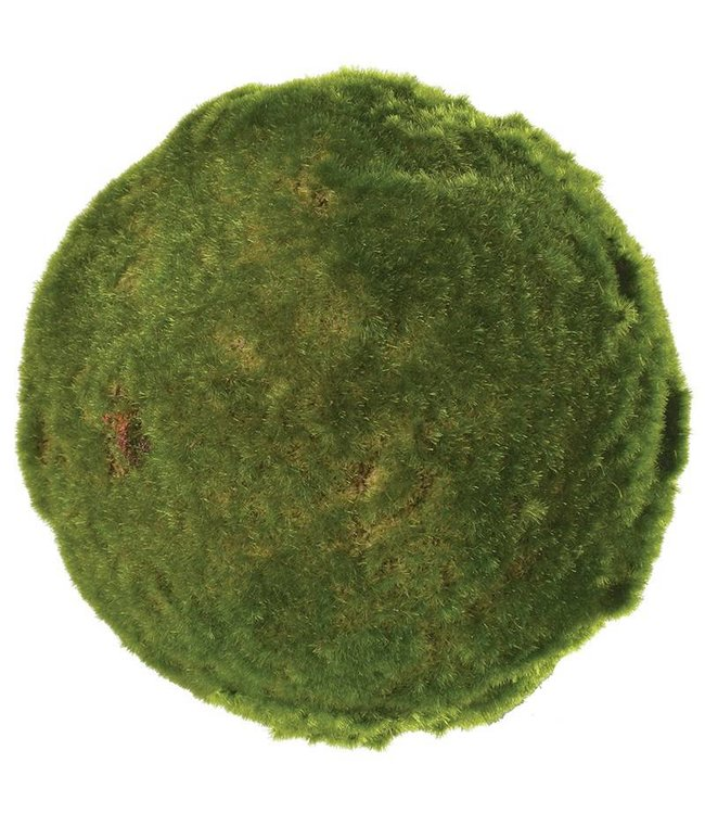 Large Green Moss Ball