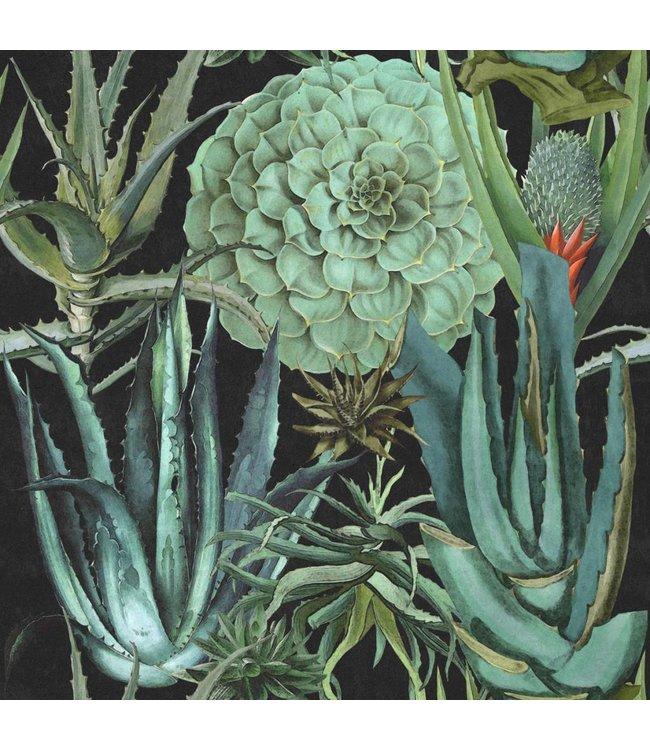 MIND THE GAP Succulentus Anthracite