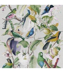 MIND THE GAP Tropical Birds