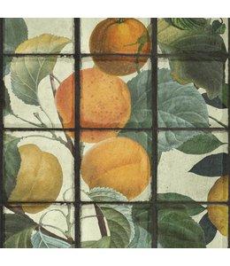 MIND THE GAP Orangerie