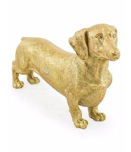 M&R Gold Dachshund