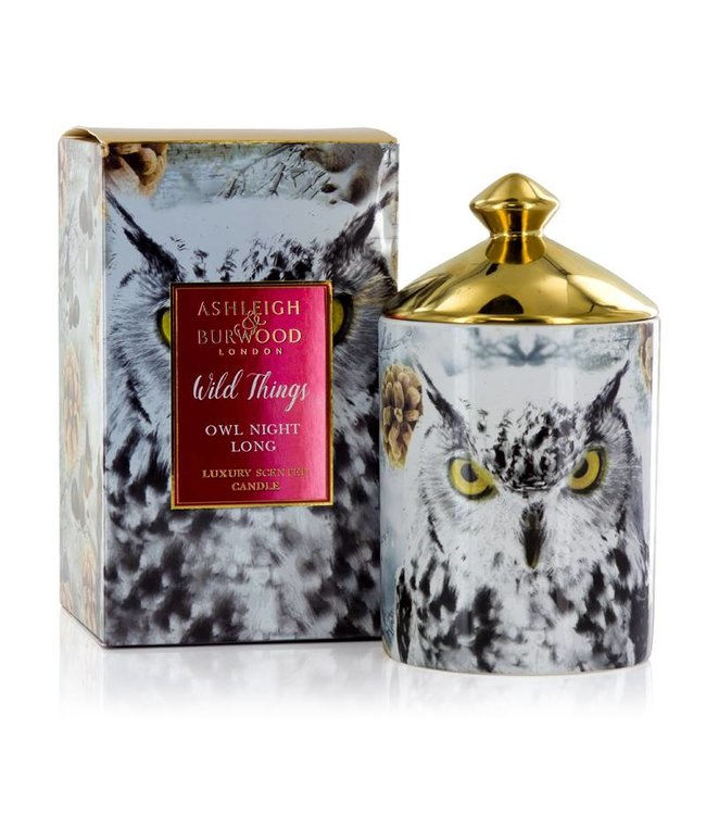 Ashleigh & Burwood Wild Things Owl Night Long Candle